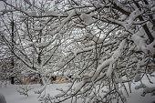 Winter At Trikala Korinthias, Peloponnese, Greece