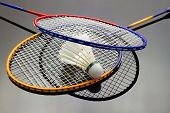 Постер, плакат: Badminton Set
