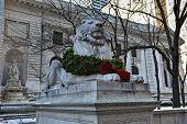 Stone Lion - Midtown Library, New York