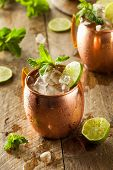 image of mule  - Icy Cold Moscow Mules with Ginger Beer and Vodka - JPG