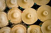 picture of panama hat  - Display of a variety of beautiful straw hats - JPG