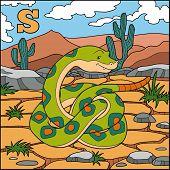 pic of anaconda  - Color alphabet for children - JPG
