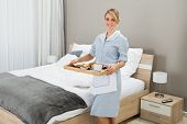 picture of maids  - Happy Maid Carrying Breakfast Tray In Hotel Room - JPG