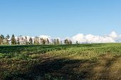 foto of early spring  - countryside fields in early spring with clouds and farmland - JPG