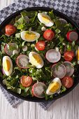 image of sorrel  - Spring salad with eggs tomatoes radishes and sorrel close up on a plate - JPG