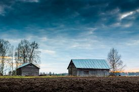 picture of barn house  - This used to be a farm house yard - JPG