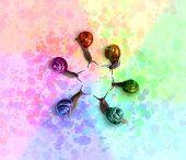 Caracóis coloridos