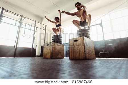 poster of Fitness Couple Doing A Box Squat At The Gym.
