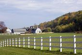 Wisconsin Dairy Farm
