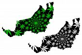 Sarawak (states And Federal Territories Of Malaysia, Federation Of Malaysia) Map Is Designed Cannabi poster