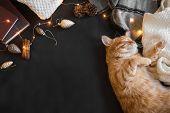 Christmas Ginger Cat poster