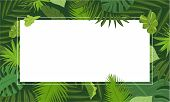 Rainforest Concept Banner. Cartoon Illustration Of Rainforest Vector Concept Banner For Web Design poster