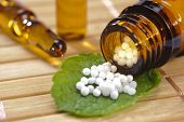 stock photo of placebo  - alternative medicine with homeopathic globules on leaf - JPG