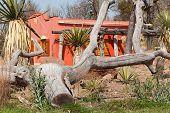 image of hacienda  - mexican hacienda house in traditional architecture of latin america - JPG