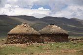 Rural zululand poster