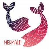 Mermaid Tails Vector Isolated On White Background. Mermaid Tail Sea Illustration Collection poster