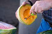Cantaloupe Meelon