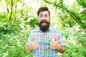 Just Give A Thumbs Up. Happy Guy Gesturing Thumbs Ups On Summer Landscape. Hipster With Mustache And poster
