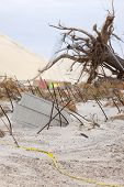 SEASIDE HEIGHTS, NJ - JAN 13: An uprooted tree and bent rebar in the sand on January 13, 2013 in Sea