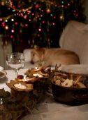christmas table candles dog