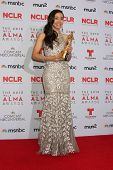 LOS ANGELES - SEP 27:  Aimee Garcia at the 2013 ALMA Awards - Press Room at Pasadena Civic Auditorium on September 27, 2013 in Pasadena, CA