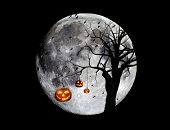 Full moon with hanging jackolanterns and flying ravens. Digital composite. Halloween background.