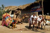PUSHKAR, INDIA - DECEMBER 4: Two Rajasthani mans with camel are waiting clients for camel riding aft