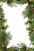 Christmas and winter floral border with mistletoe, ivy, holly and winter greenery over white backgro