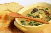 picture of morels  - Cream soup prepared of chicken meat and lot of sorts of wild mushrooms spiced with fresh green herb spices and served in rustic ceramic bowl with toasted bread