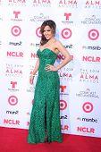 LOS ANGELES - SEP 27:  Maria Canals-Barrera at the 2013 ALMA Awards - Arrivals at Pasadena Civic Auditorium on September 27, 2013 in Pasadena, CA