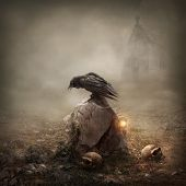 image of horror  - Crow sitting on a gravestone in the the field - JPG