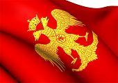 Flag Of Palaiologos Dynasty