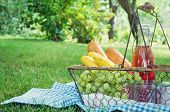 Vintage Picnic Basket With Fruit