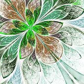 Beautiful Fractal Flower In Green And Beige. Computer Generated