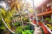 picture of guest-house  - Guest house near the road in tropical greenery village of Kovalam Kerala India - JPG