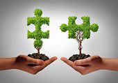 stock photo of metaphor  - Team collaborate business concept with two human hands holding trees shaped as a jigsaw puzzle coming together as a success metaphor for growing cooperation and to build a teamwork agreement - JPG