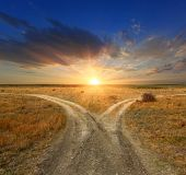 stock photo of steppes  - Fork roads in steppe on sunset background - JPG