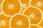 Background With Citrus-fruit Of Orange Slices
