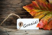 Fall Label With Grazie