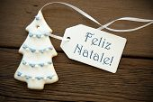 Blue Feliz Natale As Christmas Greeting
