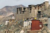 pic of jammu kashmir  - Leh Palace  - JPG