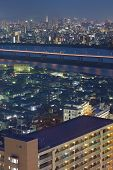 View of Tokyo city and Tokyo tower from outside the city