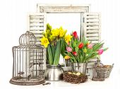 Home Interior With Fresh Spring Flowers And Easter Eggs