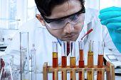 Male Chemist Pouring Chemical Fluid