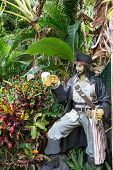 Pirate Statue With Beer