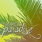 Tropical Paradise Quote Illustration