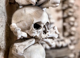 image of skull crossbones flag  - Human skull in the basement vault lined one over the other - JPG