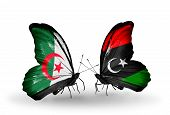 picture of libya  - Two butterflies with flags on wings as symbol of relations Algeria and Libya - JPG