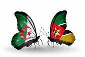 Two Butterflies With Flags On Wings As Symbol Of Relations Algeria And Mozambique