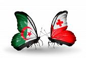 Two Butterflies With Flags On Wings As Symbol Of Relations Algeria And Tonga